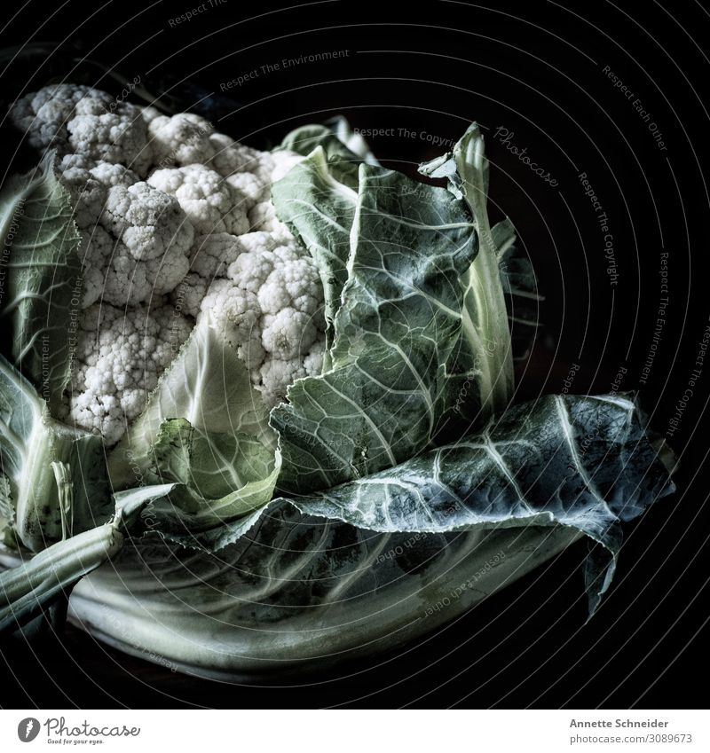 Blumenkohl Lebensmittel Gemüse Salat Salatbeilage Ernährung Bioprodukte Slowfood Pflanze Blatt Gesundheit natürlich grün weiß Innenaufnahme Porträt