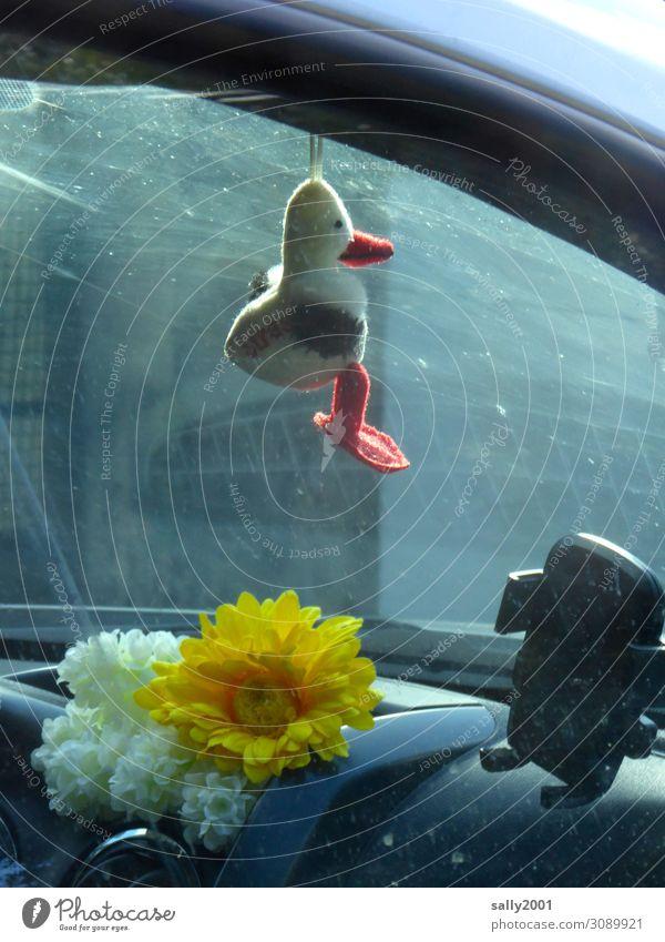 Mitfahrgelegenheit... Verkehr Personenverkehr Autofahren PKW hängen Glück Identität Schutz Entenvögel Stofftiere Glücksbringer Blume künstlich Navigation
