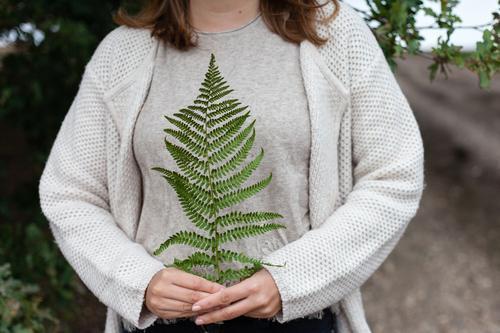 Farn Frau Natur Sommer Pflanze grün Hand Wald Herbst festhalten