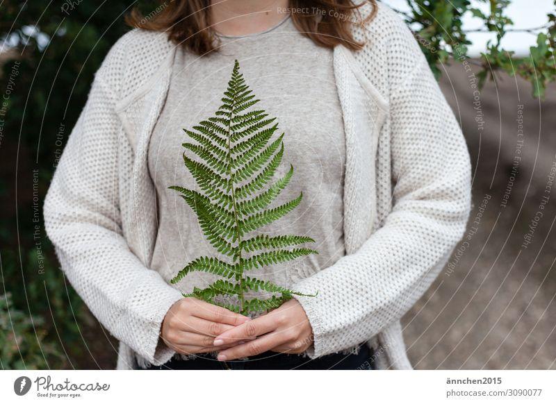 Farn Natur Pflanze festhalten Hand Wald grün Frau Sommer Herbst Außenaufnahme schützen