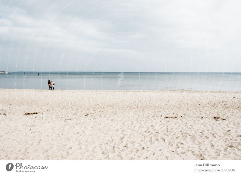 Timmendorferstrand #6 wasser Timmendorfer Strand Ostsee ostseeküste Ostseestrand Norddeutschland sand ausblick landschaft klares wasser menschen horizont Küste