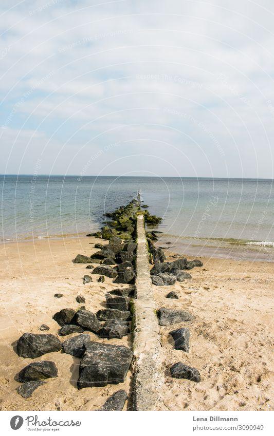 Timmendorferstrand wasser ausblick Timmendorfer Strand ostsee ostseeküste Ostseestrand sand meer klares wasser horizont hochkant steine algen bewülkter himmel