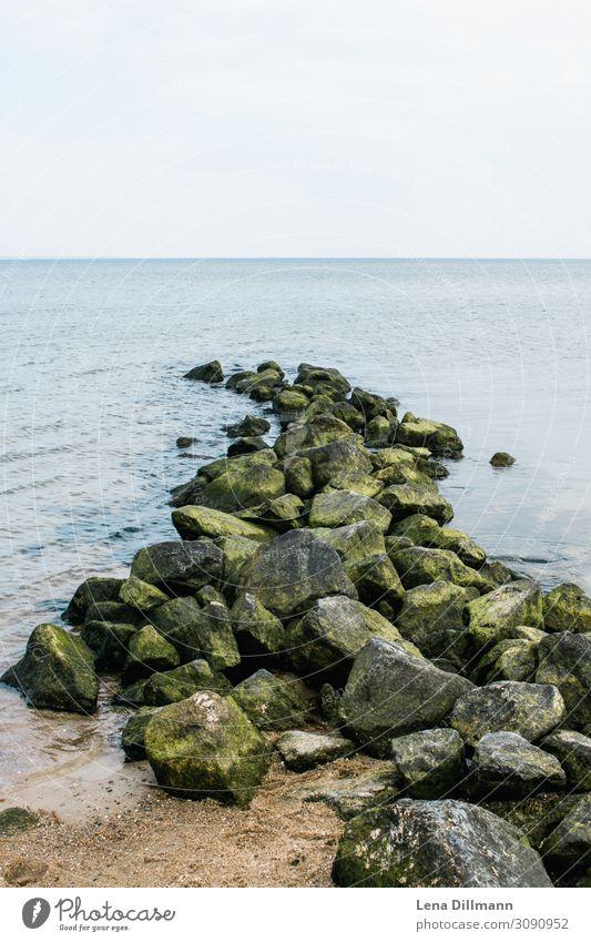 Timmendorferstrand #3 Timmendorfer Strand wasser klares wasser algen steine trist ausblick horizont sand Norddeutschland Ostsee ostseeküste Ostseestrand natur