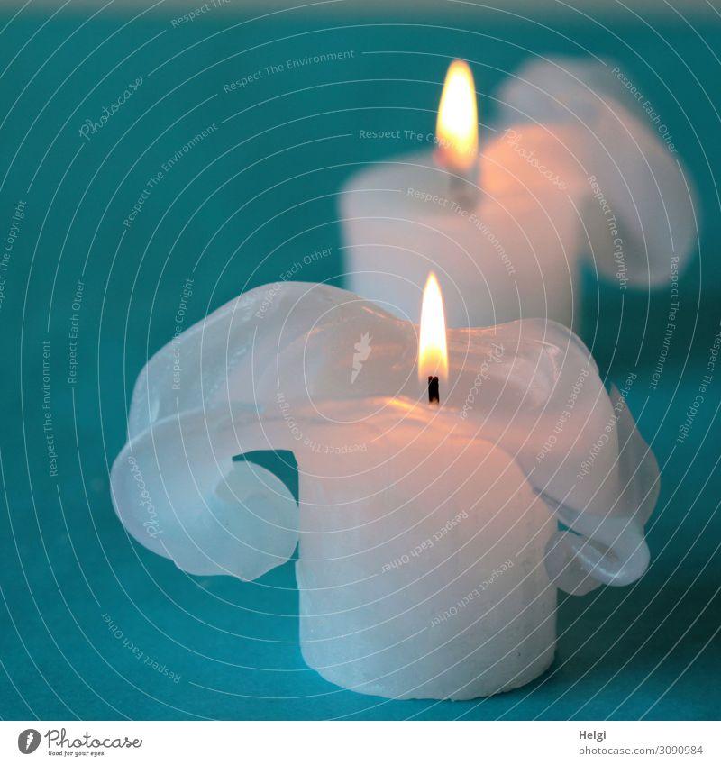 zwei weiße brennende Kerzen mit bizarren Wachsformationen stehen auf türkisem Hintergrund Feste & Feiern Weihnachten & Advent Zeichen leuchten ästhetisch