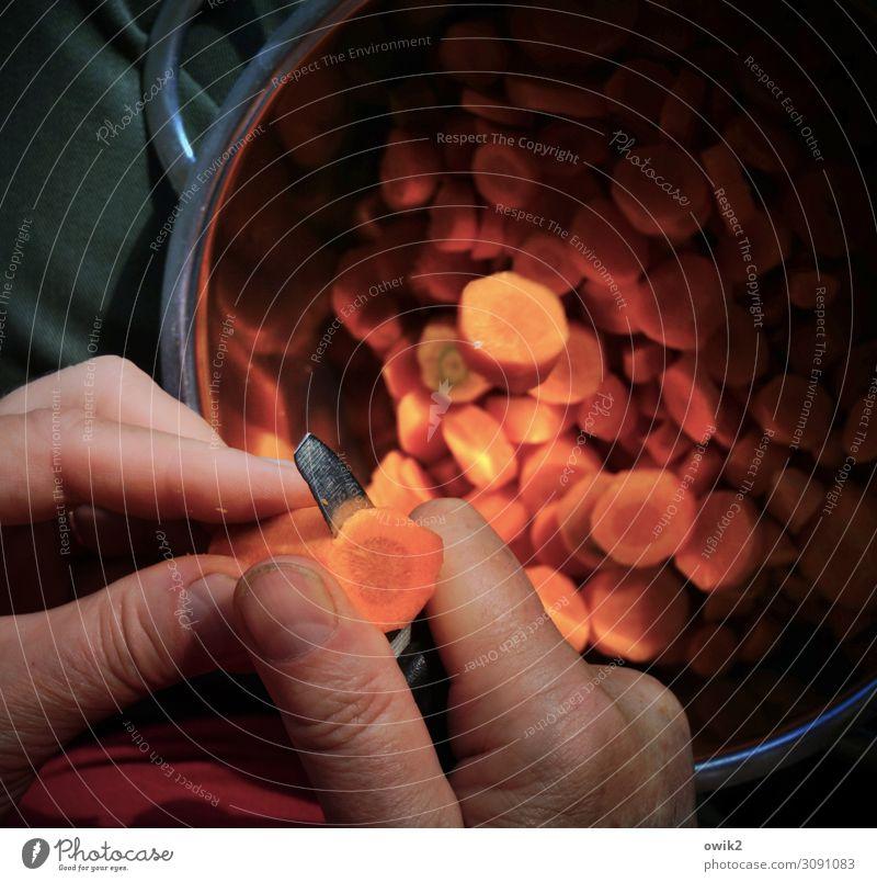Good for your eyes Hand Arbeit & Erwerbstätigkeit Finger Gemüse viele Teile u. Stücke Messer Vorsicht geduldig voll Topf Möhre fleißig zerkleinern