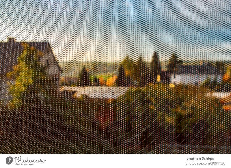 Blick auf einen Garten durch ein Fliegengitter Himmel Baum Haus Ferne Fenster Hintergrundbild Herbst Häusliches Leben Aussicht Idylle Jahreszeiten Gitter