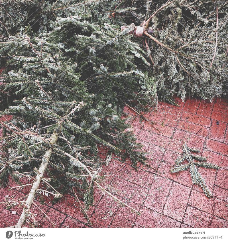 weggeworfene Weihnachtsbäume am Straßenrand Lifestyle Winter Weihnachten & Advent Umwelt Baum alt trashig Deutschland Recycling Januar Müll wegwerfen