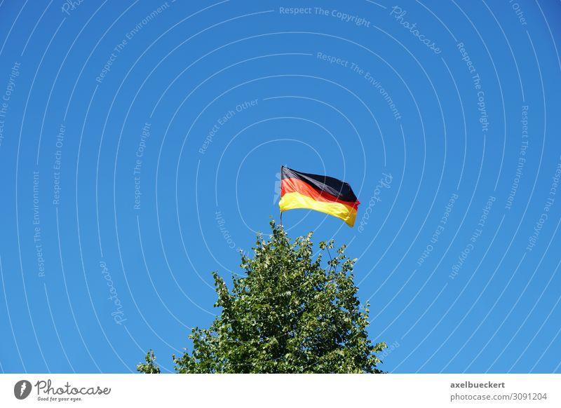Deutsche Flagge auf Baumspitze Umwelt Natur Landschaft Himmel Wolkenloser Himmel Schönes Wetter Wind Garten Wald Zeichen Fahne gold rot schwarz Deutschland Fan