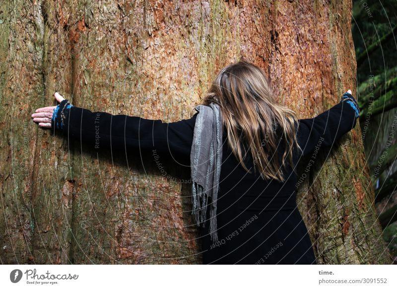 Inspiration   wertvoll feminin Frau Erwachsene 1 Mensch Umwelt Natur Baum Baumstamm Mantel Schal brünett langhaarig Umarmen Wärme Gefühle Lebensfreude