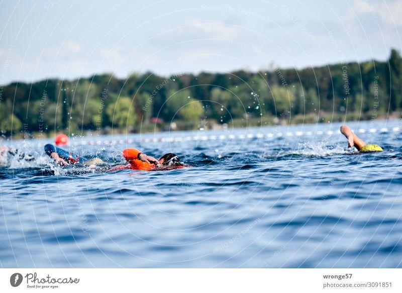 Triathlon Schwimmen sportlich Sport Sportler Sportveranstaltung Schwimmen & Baden See Mensch 5 Menschengruppe 18-30 Jahre Jugendliche Erwachsene 30-45 Jahre