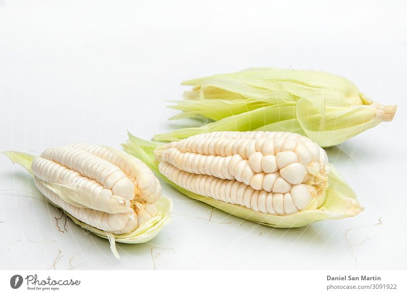 Schoko, riesiger weißer Mais. Auf weißem Hintergrund Gemüse Ernährung Diät Leben Blatt frisch gelb gold grün Lebensmittel Zutaten ganz Korn Gesundheit Kerne