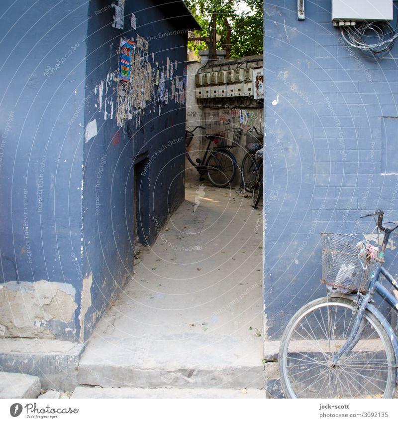 Einblick hintere Gasse Ferne Subkultur Plakat Tier Peking Mauer Wand Niveau Fahrrad Standort stehen authentisch eckig Originalität retro trist blau Stimmung