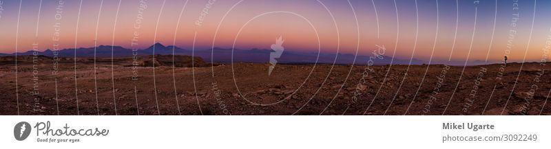 Eine Silhouette beim unglaublichen Sonnenuntergang in der Atacama-Wüste. schön Ferien & Urlaub & Reisen Tourismus Natur Landschaft Sand Himmel Horizont Wärme
