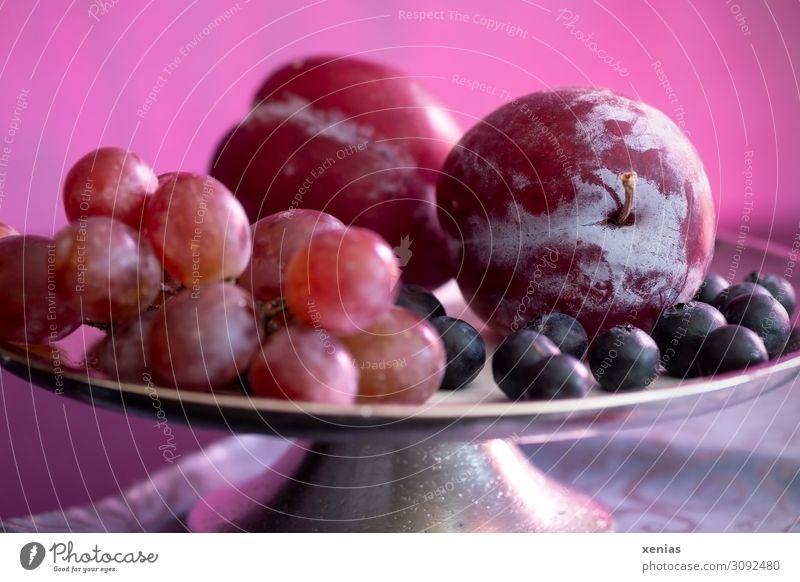 Obstschale in Violett Lebensmittel Frucht Pflaume Weintrauben Blaubeeren Bioprodukte Vegetarische Ernährung Diät Schalen & Schüsseln Häusliches Leben