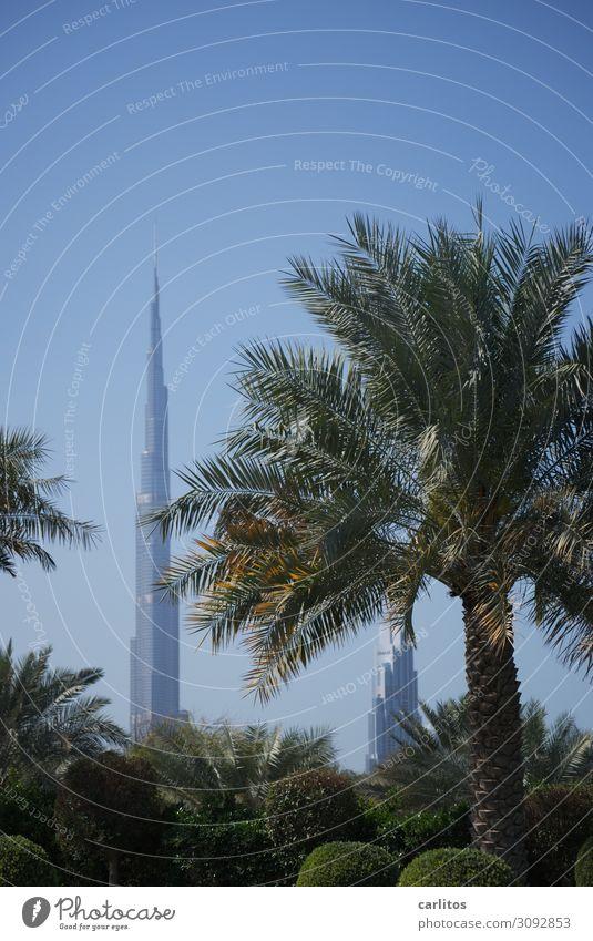 Scheinriese Dubai Vereinigte Arabische Emirate VAR Weltausstellung 2022 Burj Khalifa Hochhaus Architektur Tourismus Geld Wirtschaft Palme Garten