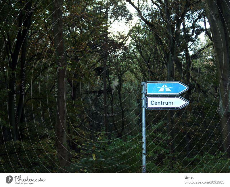 verlaufen zwecklos | on the road again Umwelt Natur Landschaft Pflanze Baum Wald Verkehr Wege & Pfade Autobahn Verkehrszeichen Verkehrsschild
