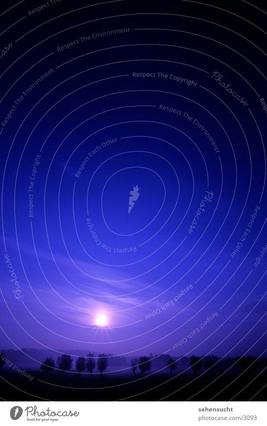horizont01_kein sonnenuntergang Himmel Baum Sonne blau schwarz Nebel Horizont Erde