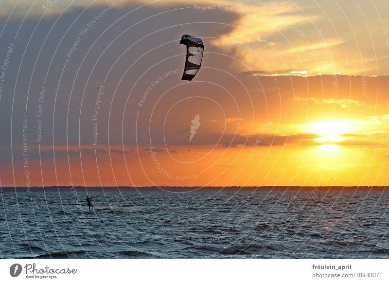 Sonne Wind Meer Mensch Freude Freizeit & Hobby Sport Wassersport Surfen Surfer Kiting Kiter 1 Sommer Schönes Wetter Wellen Küste frei sportlich blau gelb orange