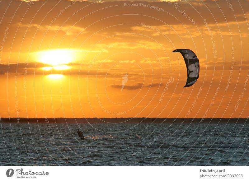 Sonnenenergie Freude Freiheit Sommer Sommerurlaub Meer Wellen Sport Kiting Kiter Surfen 1 Mensch Sonnenaufgang Sonnenuntergang Sonnenlicht Schönes Wetter Küste