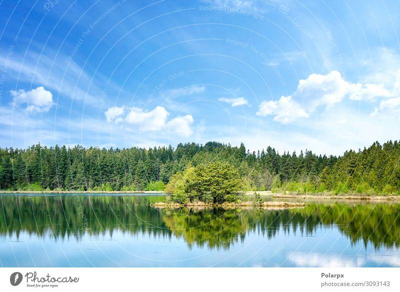Bunte Seenlandschaft mit Spiegelungen von Bäumen schön Ferien & Urlaub & Reisen Abenteuer Sommer Insel Umwelt Natur Landschaft Pflanze Himmel Horizont Baum Park