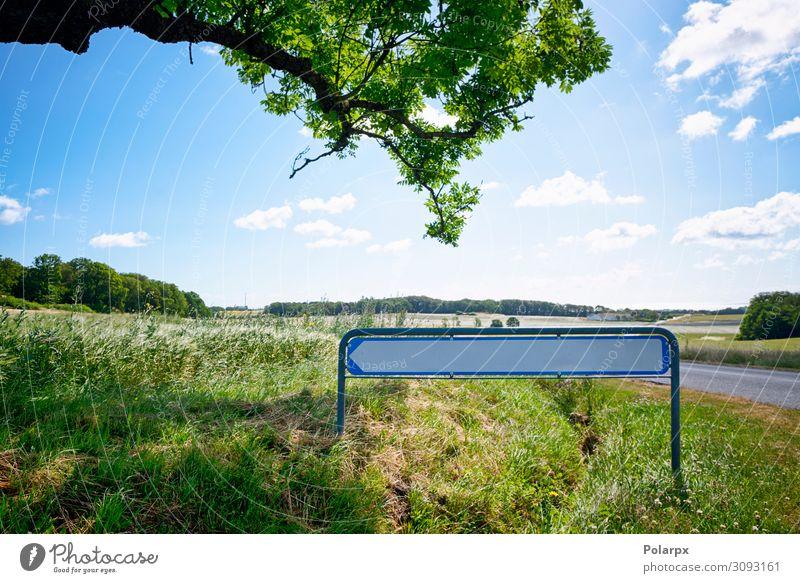 Verkehrszeichen mit einem Pfeil in idyllischer Natur Ferien & Urlaub & Reisen Ausflug Abenteuer Sommer wandern Landschaft Himmel Baum Gras Wiese Wald Straße