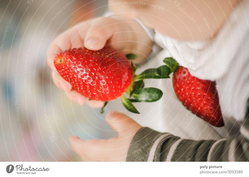 Babyhände halten Erdbeere Schwache Tiefenschärfe Unschärfe Licht Textfreiraum unten Textfreiraum oben Innenaufnahme mehrfarbig Farbfoto Frühling Klimawandel