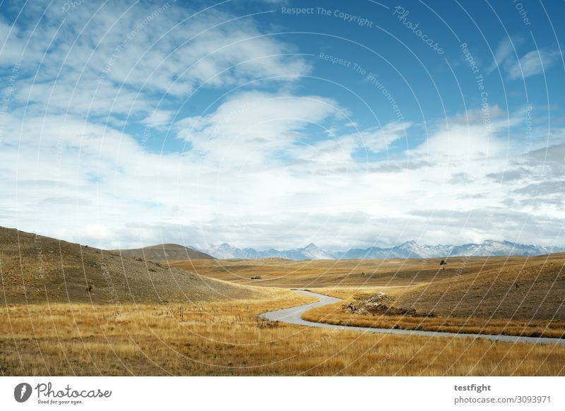 mt. cook national park Umwelt Natur Landschaft Pflanze Tier Himmel Wolken Klima Gras Sträucher Moos Berge u. Gebirge Gipfel Schneebedeckte Gipfel Gletscher