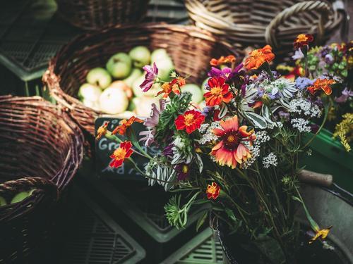 Herbststräuße Sommer Pflanze blau rot Blume Umwelt orange braun grau Frucht Zufriedenheit kaufen Gemüse Wohlgefühl Blumenstrauß
