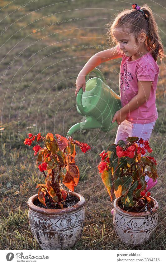 Kleines Mädchen, das hilft, die Blumen zu gießen. Topf Lifestyle Sommer Sommerurlaub Garten Kind Arbeit & Erwerbstätigkeit Gartenarbeit Mensch 1 3-8 Jahre