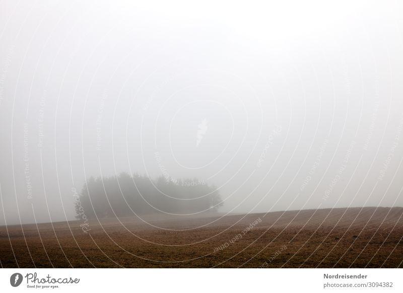 Herbst über den Feldern Ausflug Natur Landschaft Erde Luft Wetter schlechtes Wetter Nebel Regen Baum Wald Hügel wandern dunkel kalt nass trist Einsamkeit Klima