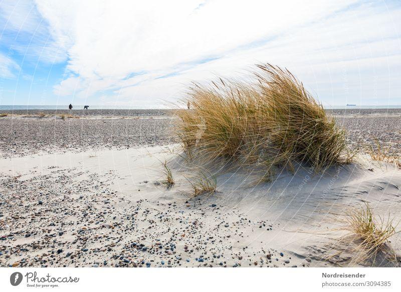 verloren | in der Weite Ferien & Urlaub & Reisen Ausflug Ferne Freiheit Sommerurlaub Strand Meer wandern Mensch Urelemente Sand Luft Wasser Horizont