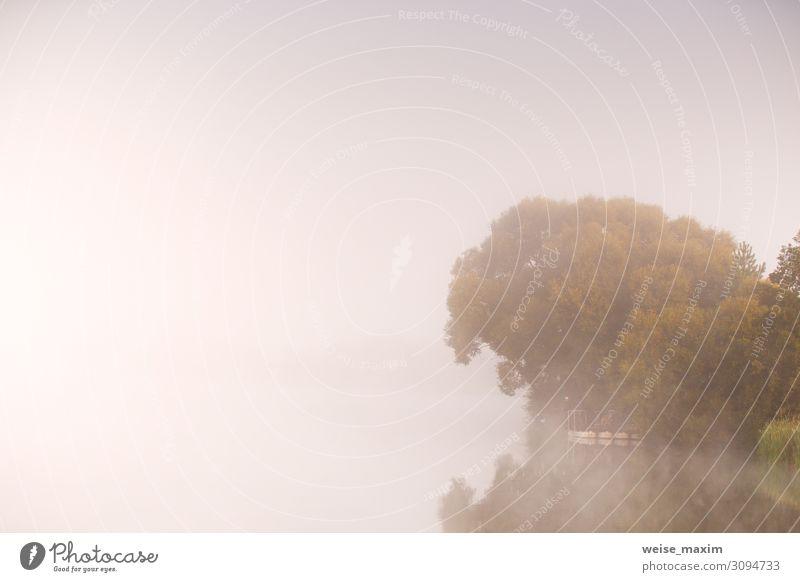 Mensch Himmel Ferien & Urlaub & Reisen Natur Sommer Pflanze Wasser Landschaft Baum Erholung Ferne Lifestyle Herbst Umwelt natürlich Sport