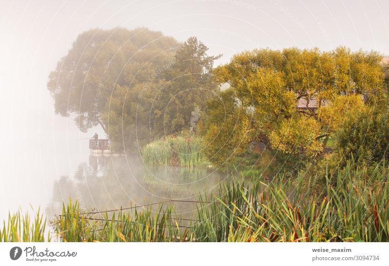 Mensch Ferien & Urlaub & Reisen Natur Sommer Pflanze Wasser Landschaft Baum Erholung Ferne Lifestyle Herbst Umwelt natürlich Freiheit See