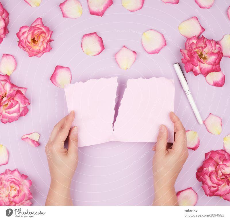 zwei Hände halten ein leeres rosa Blatt. Design schön Sommer Dekoration & Verzierung Feste & Feiern Hochzeit Geburtstag Hand Pflanze Blume Blüte Papier