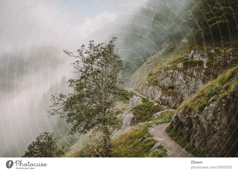 Meraner Höhenweg Freizeit & Hobby Ferien & Urlaub & Reisen Abenteuer Berge u. Gebirge wandern 1 Mensch Natur Landschaft Wolken Herbst Klimawandel