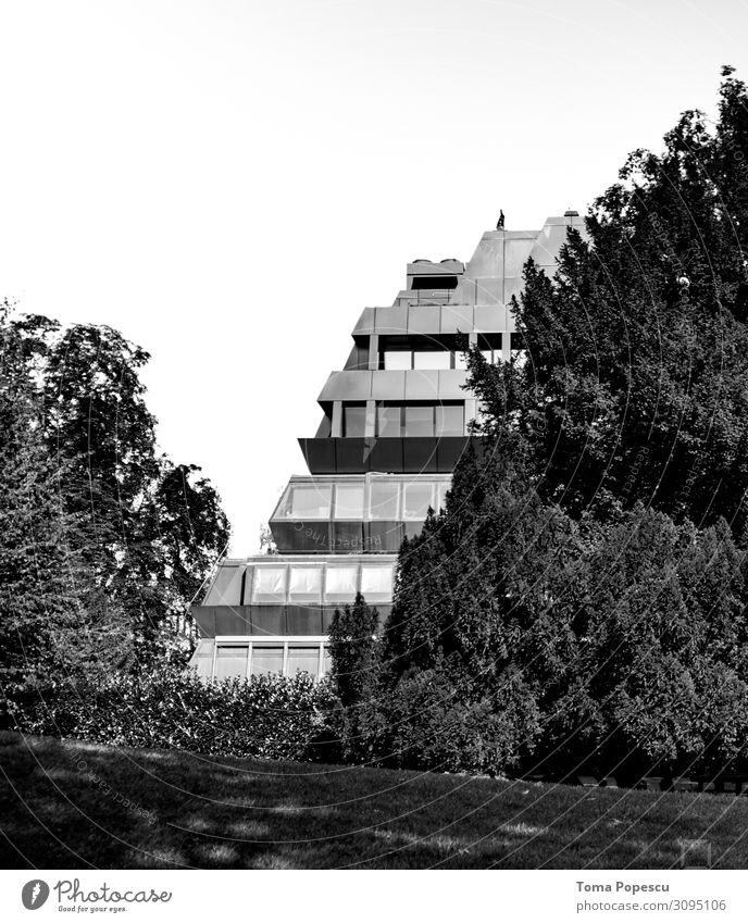 Versteckt Umwelt Natur Landschaft Pflanze Baum Wald Stadt Hauptstadt Haus Bauwerk Gebäude Architektur atmen genießen Freude Ecke weißer Himmel Schwarzweißfoto