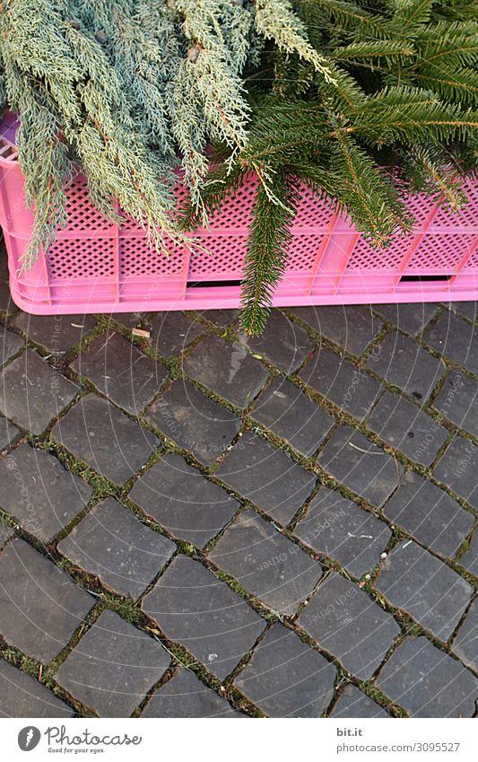grüne, frische Tannenzweige, liegen auf einer rosa Plastikbox zum Verkauf, auf dem Weihnachtsmarkt. Angebot von Tannengrün zur Dekoration, Verzierung und basteln von Adventskranz in der Adventszeit. Tannenreisig zum kaufen auf Markt mit Kopfsteinpflaster.