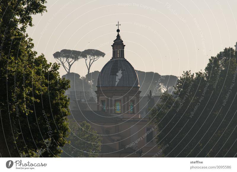 Chiesa di San Girolamo dei Croati Natur Sommer Baum Skyline Religion & Glaube Rom Italienisch lebenswert dolce vita Kirche Kuppeldach Pinie grüne lunge Park