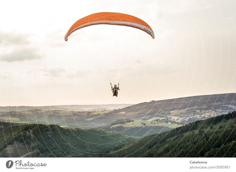 Gleiten Freizeit & Hobby Sport Gleitschirmfliegen androgyn 1 Mensch Natur Landschaft Himmel Wolken Horizont Sommer Schönes Wetter Baum Gras Sträucher Wiese Wald