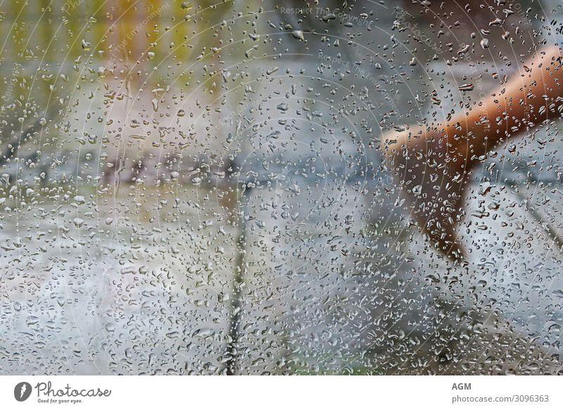 rainy day in the city Mensch Natur blau Stadt Wasser Hintergrundbild Beine gelb Bewegung Fuß orange Regen Wetter Schuhe laufen Wassertropfen