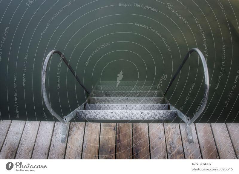 Nasser Abgang ruhig Freizeit & Hobby Wassersport Schwimmen & Baden Sommer Herbst Seeufer dreckig dunkel Leiter Leitersprosse Treppe Steg Einsamkeit kalt nass