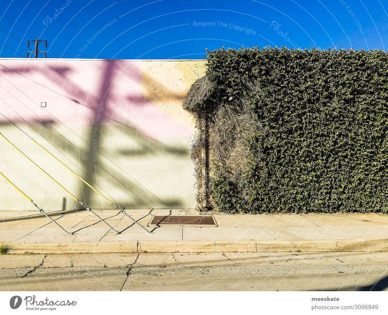 bunte Wand Stadt blau grau grün Los Angeles Kontrast Kalifornien Efeu USA Farbfoto mehrfarbig Licht Schatten Zentralperspektive