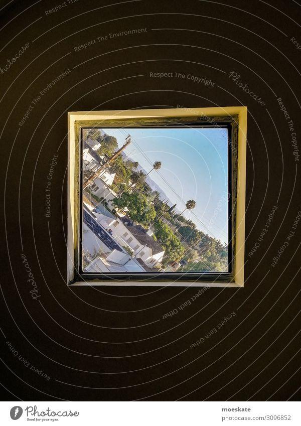 Los Angeles in schief Stadt blau Kalifornien USA Fenster Fensterblick Neigung diagonal Palme Farbfoto Gedeckte Farben Außenaufnahme Innenaufnahme Menschenleer
