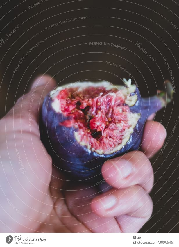 Zum anbeißen süß Gesunde Ernährung rot Hand Foodfotografie Erotik Speise Lebensmittel Essen braun rosa Frucht frisch Finger lecker