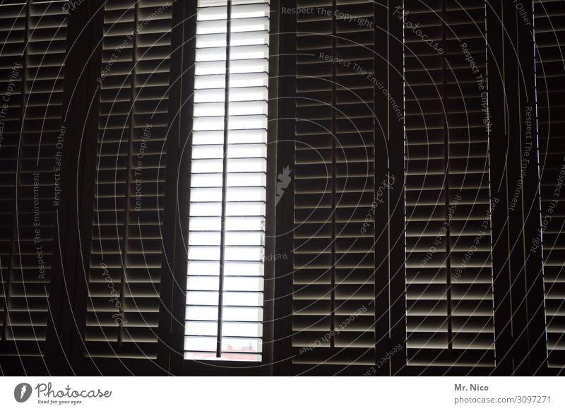 schwarz-weiß Häusliches Leben Wohnung Raum Rollladen Jalousie dunkel Fenster Tür Licht Schatten Balkontür Einsamkeit Sonnenlicht geschlossen Fensterladen