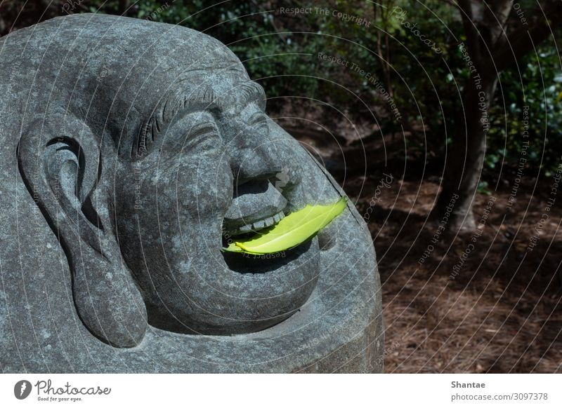 Budai-Statue mit Blatt-Opfer harmonisch Buddhismus Kunst Skulptur Kultur Natur Stein Essen Feste & Feiern frieren Buddha Angebot lachen Georgia Farbfoto
