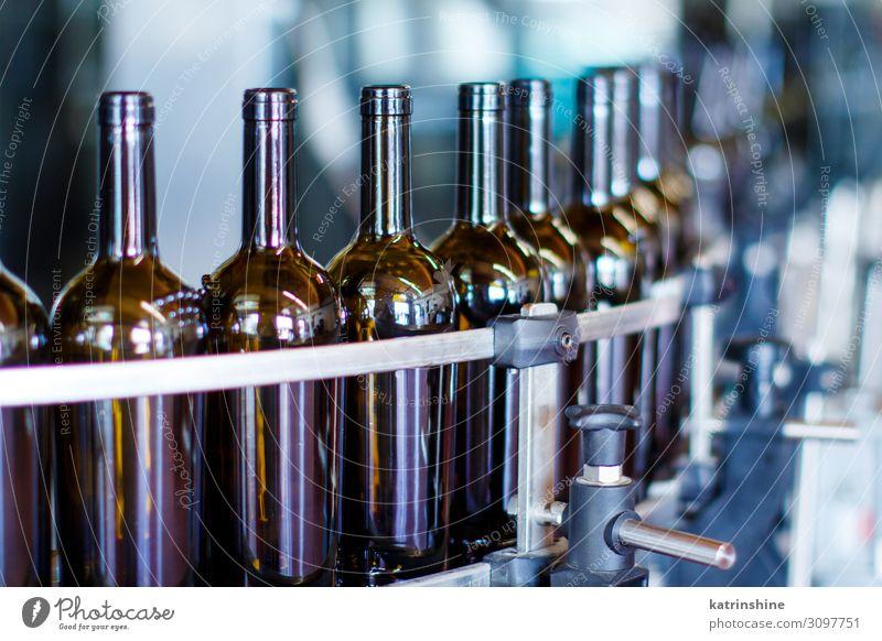 Glasflaschen in der Abfüllmaschine Flasche Industrie Technik & Technologie modern Weinherstellung Weingut Maschine Abfüllanlage automatisiert Förderband trinken