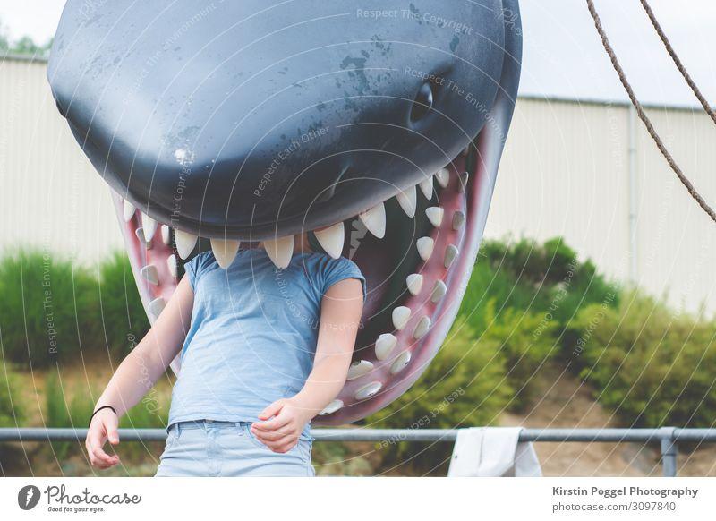 gefressen Mensch feminin Mädchen Junge Frau Jugendliche 1 13-18 Jahre Haifisch Freude Farbfoto Außenaufnahme Tag