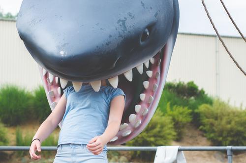 gefressen Mensch Jugendliche Junge Frau Freude Mädchen feminin 13-18 Jahre Haifisch