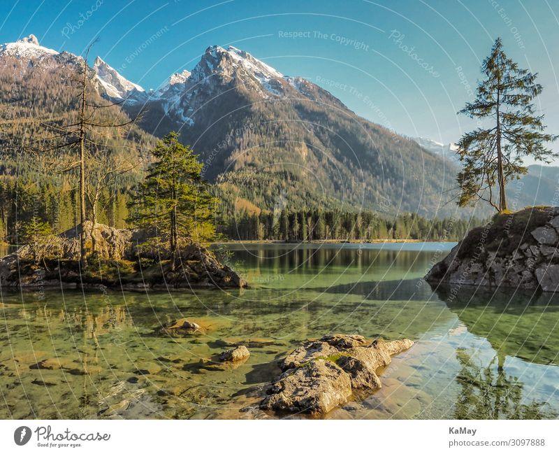 Hintersee Ferien & Urlaub & Reisen Insel Berge u. Gebirge Natur Landschaft Wasser Frühling Baum Wald Alpen Schneebedeckte Gipfel Seeufer Deutschland Bayern